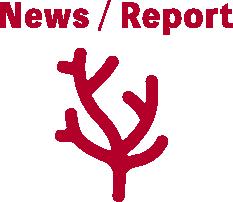 News/Report